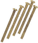Westinghouse Lighting 70636 5-Pack Brass Plated Round Head Screw