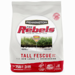 Pennington Seed 100526887 3-Lb. Rebel Fescue Seed