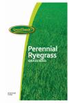 Barenbrug Usa 700784 25-Lb. VND Perennial Ryegrass Seed