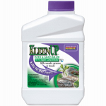 Bonide Products 7460 KleenUp Weed & Grass Killer, 16-oz.