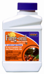 Bonide Products 880 Fung-Onil Fungicide, 16-oz.